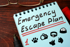 Emergency Preparedness for Families with Pets